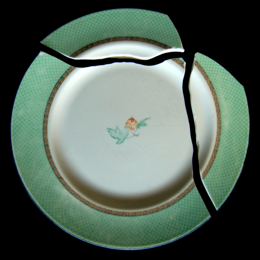 My Broken Wedgewood Dinner Plate